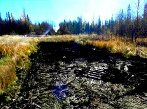 Remediation_site_photo