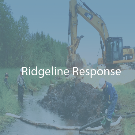 Ridgeline Response-button